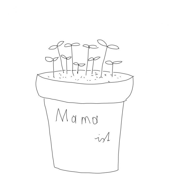 Muttertagsgeschenk Blumentopf mit Kresse